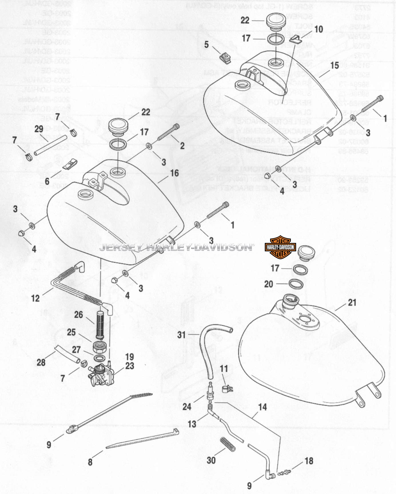 Harley Screamin' Eagle Ignition Module Wiring Diagram